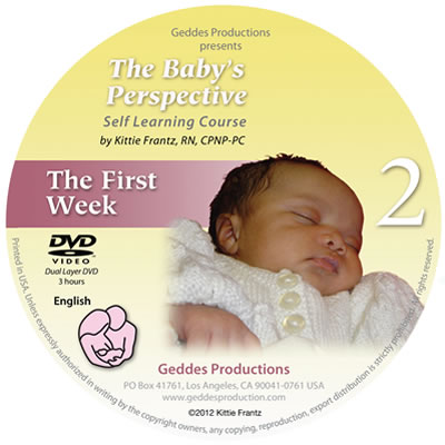 Baby's Perspective - Module 2